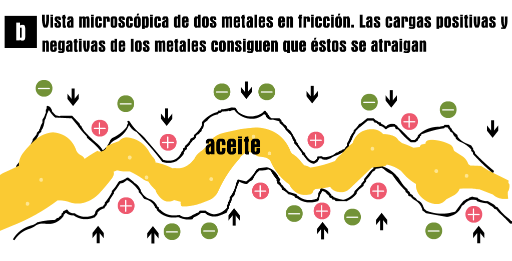 accion-fisico-quimica-A